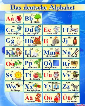 Стенд Немецкий Алфавит с картинками с синих тонах 600*750мм