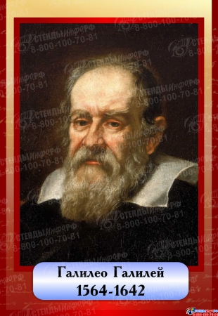 Комплект  портретов Знаменитые физики в бордовых тонах 200*290 мм Изображение #7
