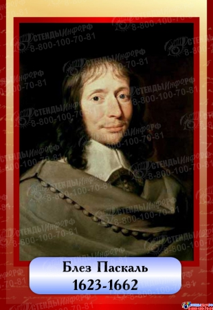 Комплект  портретов Знаменитые физики в бордовых тонах 200*290 мм Изображение #8
