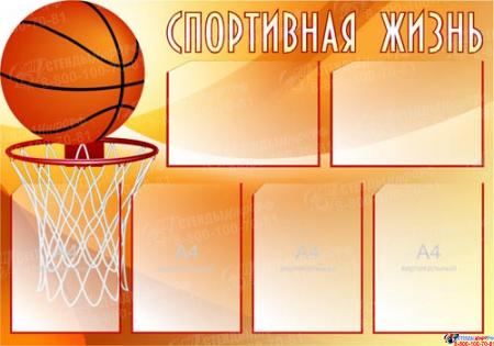 Стенд Спортивная жизнь - Баскетбол 1000*700 мм