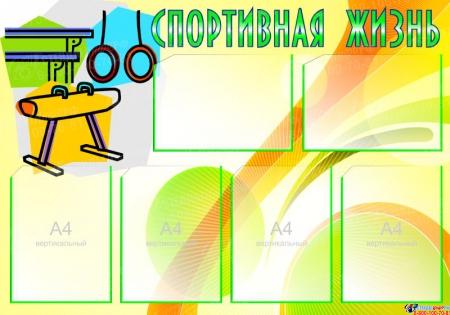 Стенд Спортивная жизнь - Гимнастика 1000*700мм