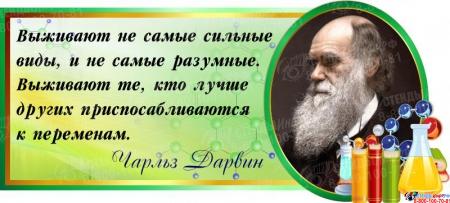 Стенд Свиток для кабинета химии и биологии с цитатой Ч.Дарвина 660*300 мм