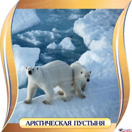 Комплект стендов Природные зоны для кабинета географии 300*300 мм Изображение #1